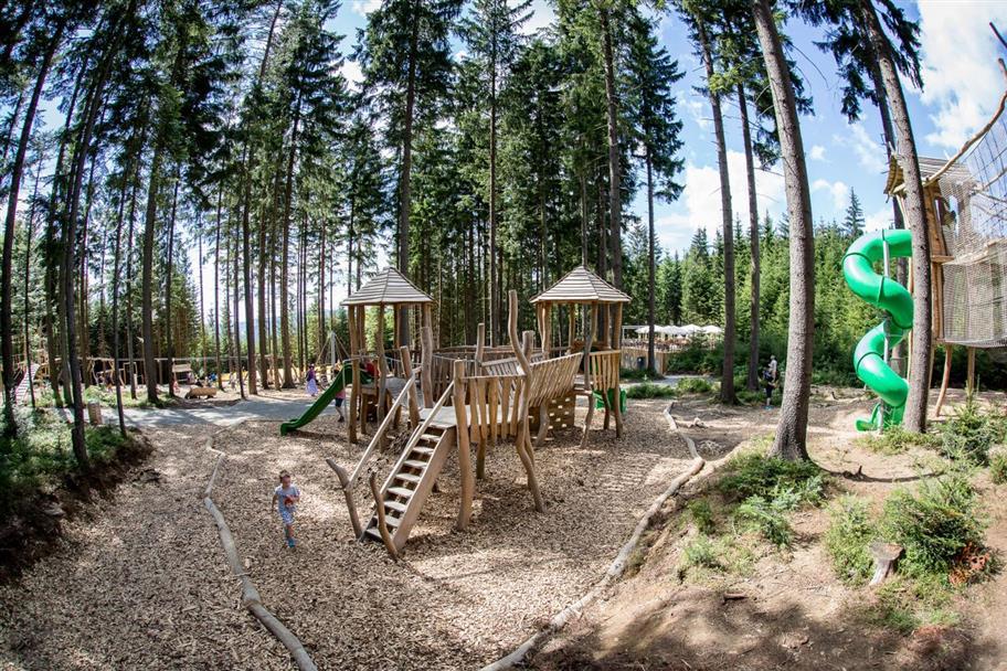 Království lesa na Lipně