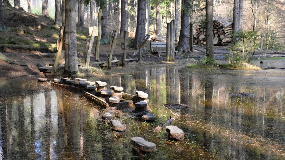 Lesní zážitkový areál Rysí stezka na Mezní Louce