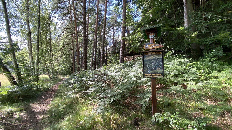 Pfeiferův lesík a vyhlídka Treppenstein