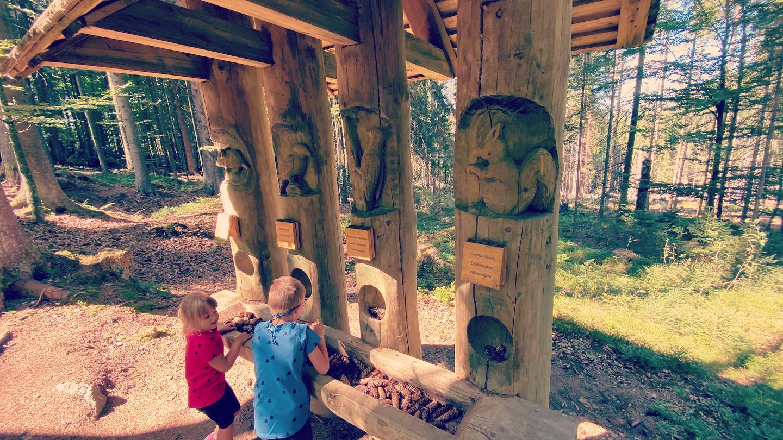 Stezka lesních her Stožec