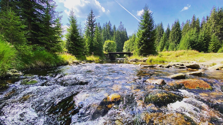 Procházka z Modravy proti proudu Modravského potoka, možná až na Březník